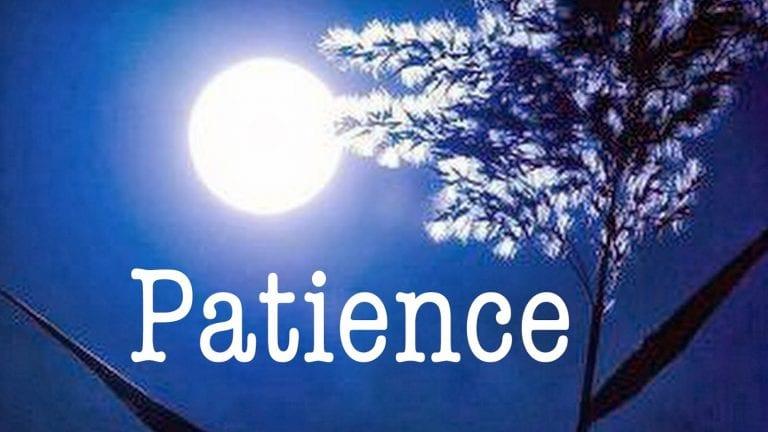 Read more about the article La patience est de 3 sortes, et celle de Yussûf était la plus parfaite