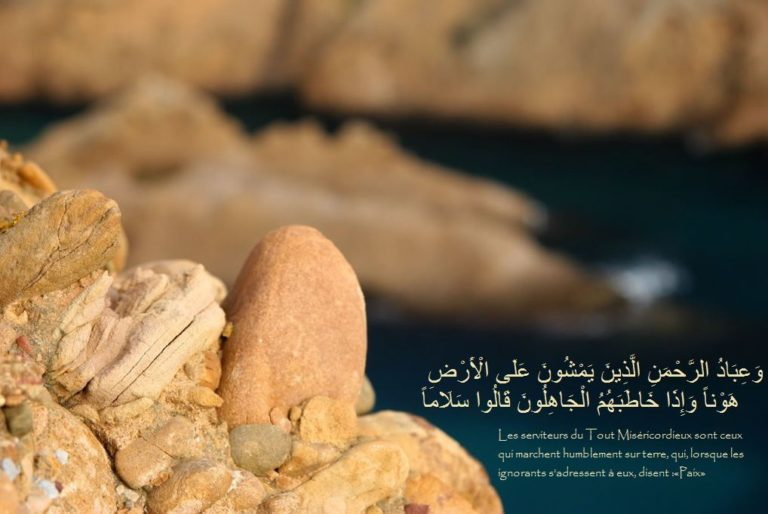 Read more about the article L'importance du Tawhid