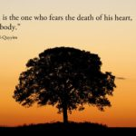Biographie de Ibn Qayyim al-Jawziyyah (rahimallah)