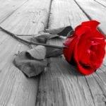 60 interrogations sur les menstrues en Islam – La femme et les menstrues