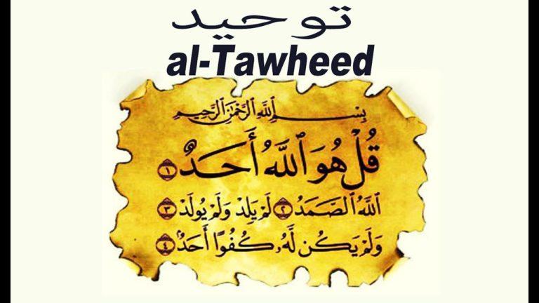 Read more about the article L'Importance de reviser constament At-tawhid