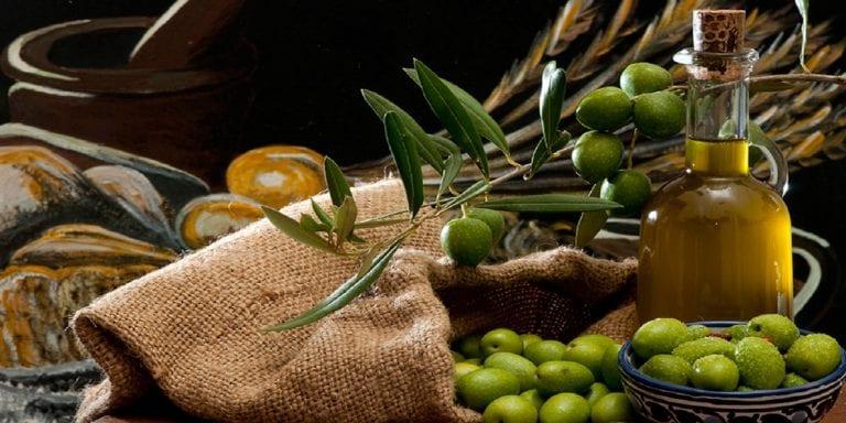 Read more about the article L'huile d'olive dans le coran