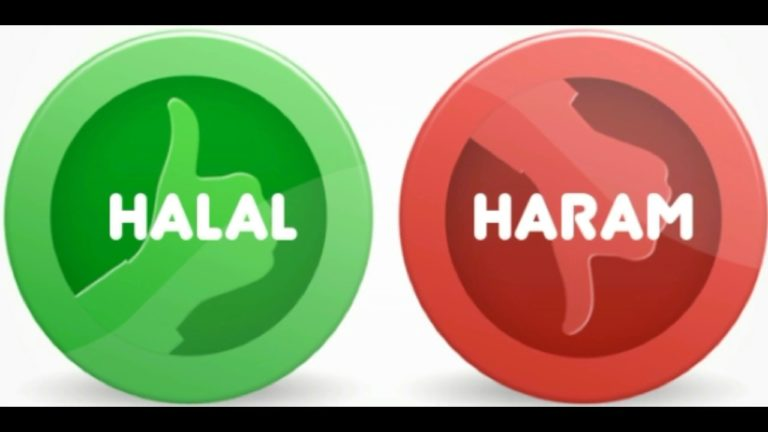 Read more about the article Les actes licites et illicites dans le rapport intime en Islam