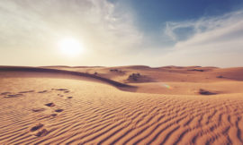 Explication en arabe du tomes 4 de Medine
