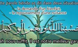 Le Sens de l'expression: HasbunAllahu wa ni'ma al-Wakîl