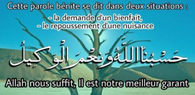 Read more about the article Le Sens de l'expression: HasbunAllahu wa ni'ma al-Wakîl